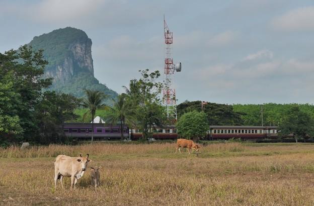 カオチュムトーンジャンクション駅 Khao Chum Thong Junction、タイ国鉄