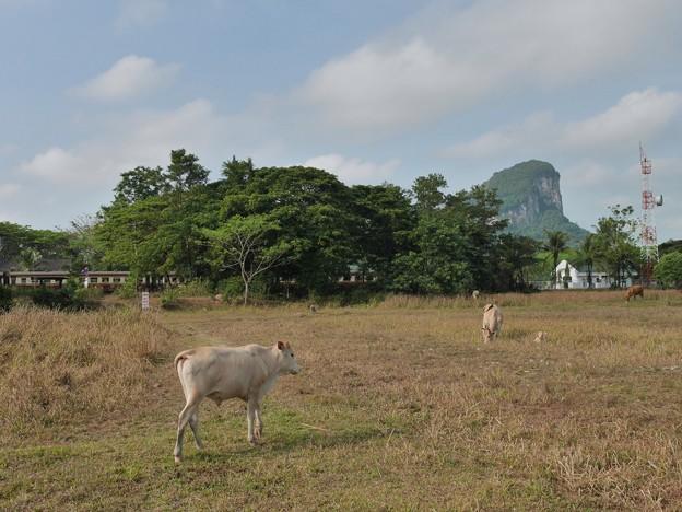 カオチュムトーンジャンクション駅 Khao Chum Thong Junction