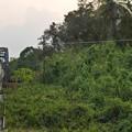 Photos: キリラッタニコム線の車窓、タイ国鉄