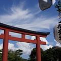 写真: 御祭禮鶴岡八幡宮20150912