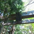 写真: 諏訪神社?