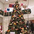 Photos: 小田急百貨店のクリスマスツリー