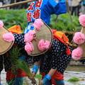 後楽園田植え祭り