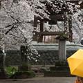 雨の実相寺