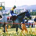 Photos: Kurofune01(2001年神戸新聞杯)