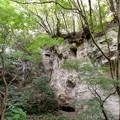 rs-150813_13_天岸岩(報国寺) (2)