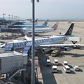 Photos: A340-300 ルフト スタアラ