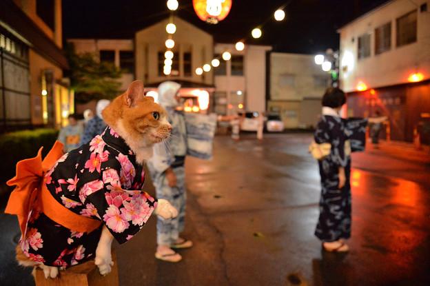 Photos: 木曽踊りファイナル
