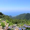 弥彦山山頂から望む日本海と佐渡ヶ島