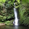 150629-54海沢園地へ滝を求めて・大滝