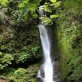150629-56海沢園地へ滝を求めて・大滝