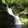 150629-66海沢園地へ滝を求めて・三ツ釜ノ滝
