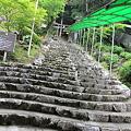 Photos: 110510-54龍河洞への階段