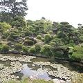 Photos: 110517-80毛利氏庭園