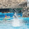 写真: 名古屋港水族館