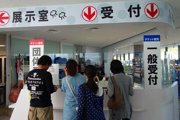 加茂水族館DSC03989