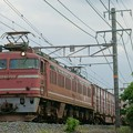Photos: EF81 723【4071レ】