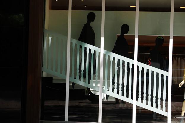 写真: 大人の階段下りる♪