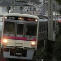 京王7000系(7729F) 特急高尾山口行き