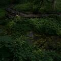 写真: P8230023