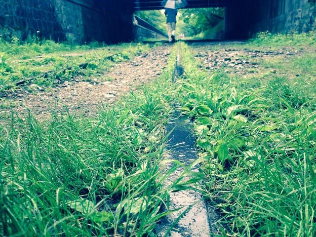廃線路の憂鬱