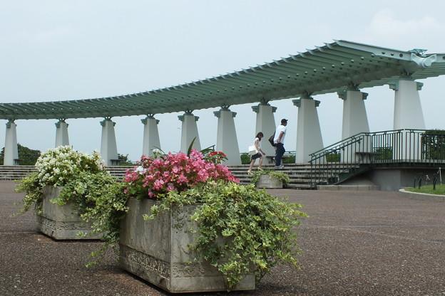 公園_横浜 F3169
