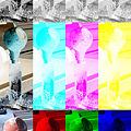 写真: アカデミー科学技術賞はモノクロフィルム      イメージ