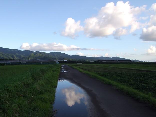 水溜りの雲