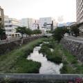 田川(女鳥羽川)千歳橋より西(長野県松本市)
