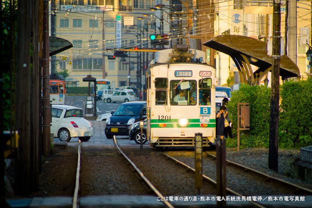 写真: ここは電車の通り道。