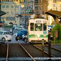 Photos: ここは電車の通り道。