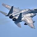 ギラリ光る 304飛行隊F-15J