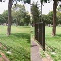 Photos: 取り残された門