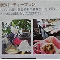 WAN☆NYAN TIMES 1月号 アップ