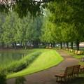 写真: 川越水上公園の池周りのベンチ