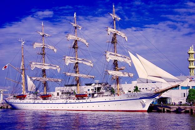 今度は帆をたたむ。。日本丸 5月31日