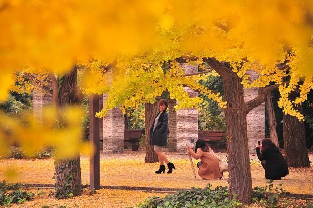 モデルさんのように可愛くとって・・昭和記念公園カナール噴水 20141109