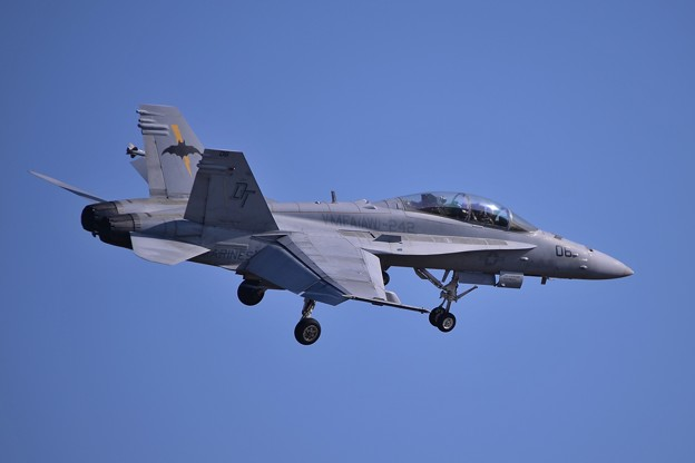 VMFA-242BATS06 F/A-18Dいいツッコミでランディングへ・・20141122