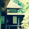 懐かしいさを感じる田舎の家。。川崎市日本民家園6月28日