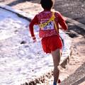 Photos: 雪解けの箱根山登り大平台・・城西大の選手 20150102