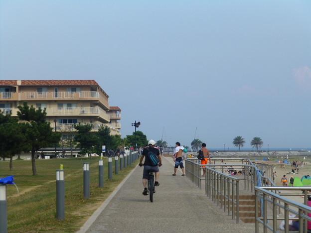 長閑な海岸