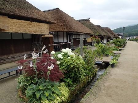 福島、栃木方面の温泉調査から帰ってきました!