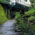 写真: 神田川源流付近