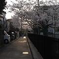 写真: R0011246