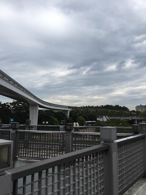 Photos: ディズニーランド