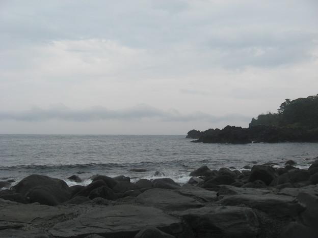 写真: 海洋公園ちょっとダイビングにはつらいかも