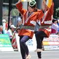 Photos: 27.7.26夏まつり仙台すずめ踊り(その3)