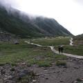 ここは真夏の別世界(8.5度)~乗鞍岳・畳平自然遊歩道